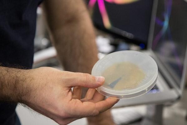 A Pocket Spacecraft in a petri dish.