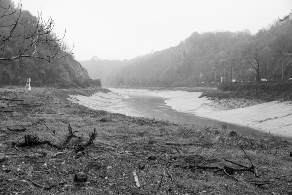 Flotsam on the banks of the Avon Gorge on a misty morning