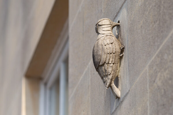 Carved stone woodpecker ornament on building wall