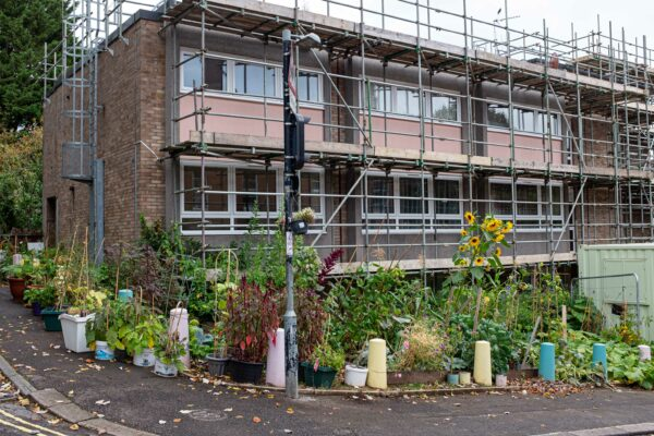 Vegetable garden, Carrick House, Joy Hill, Bristol