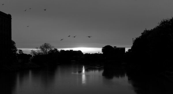 Sunrise over the River Avon in Bristol at high tide, blurred pigeons in the sky, shot from Ashton Avenue Bridge